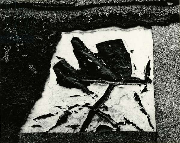 Paper and Gravel, Oregon, 1970 (silver gelatin print)
