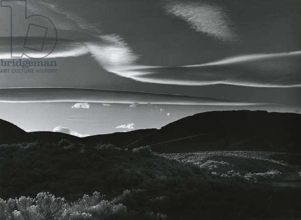 Landscape, 1981 (silver gelatin print)