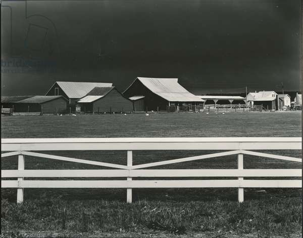 Virginia Farm (Storm Over Barns), 1947 (silver gelatin print)