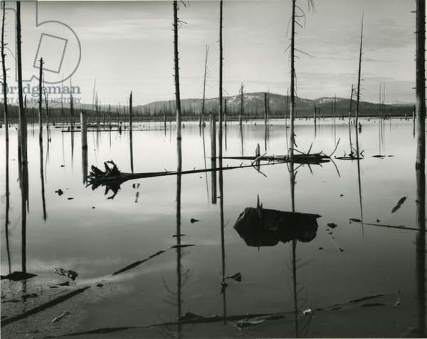 Lake Elsinore, California, 1962 (silver gelatin print)