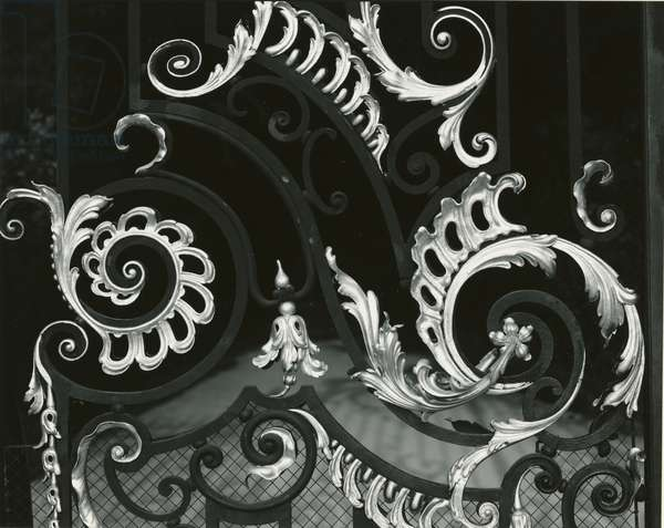 Gilded Wrought Iron, France, 1960 (silver gelatin print)