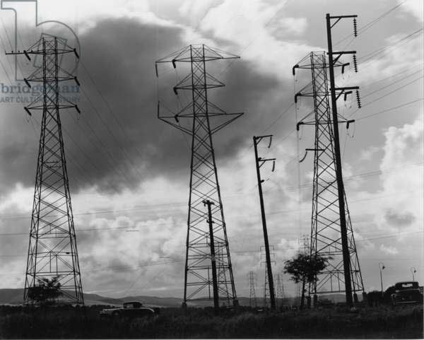 Power Lines, San Francisco, 1937 (silver gelatin print)