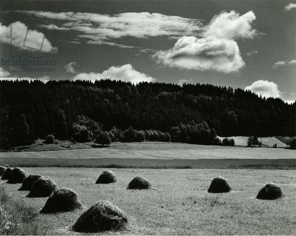 Haystacks, Europe, 1968 (silver gelatin print)