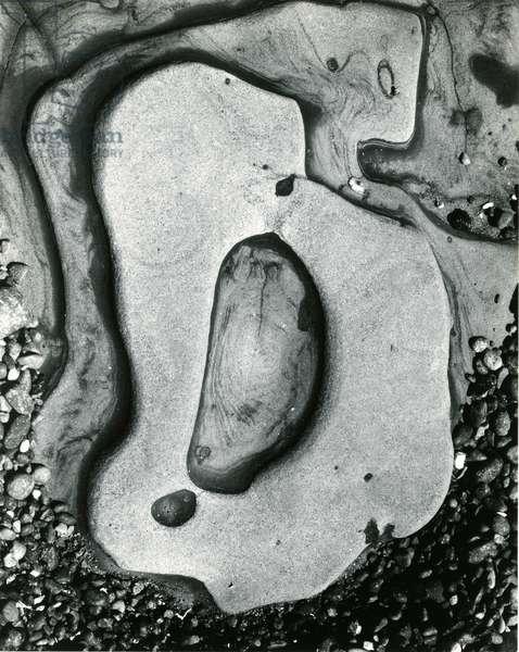 Rock and Pebbles, California, 1959 (silver gelatin print)