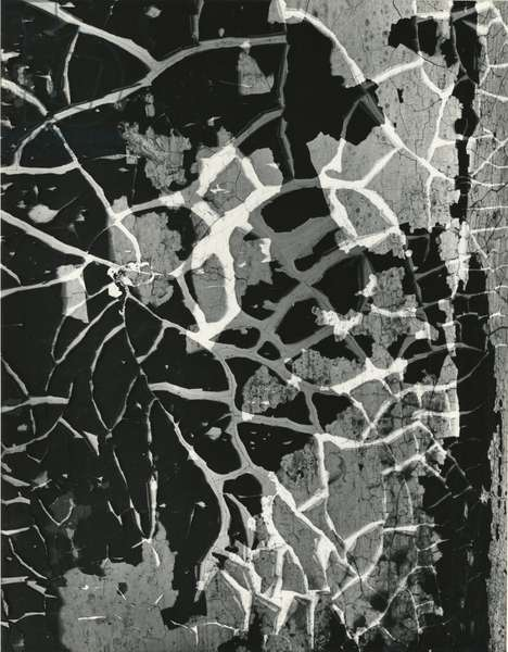 Cracked Paint, 1974 (silver gelatin print)
