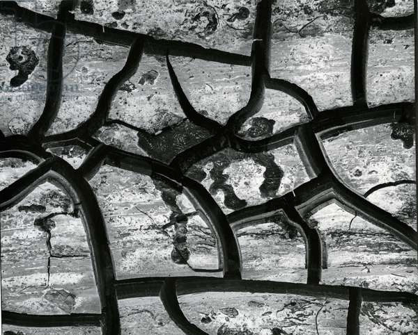 Mud Cracks, c. 1970 (silver gelatin print)