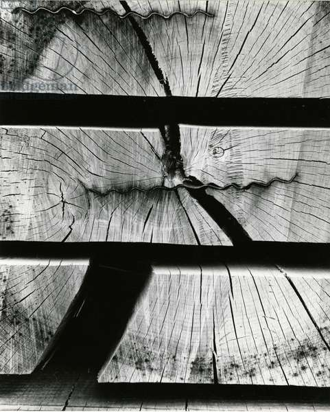Wood Absraction, Europe, 1971 (silver gelatin print)
