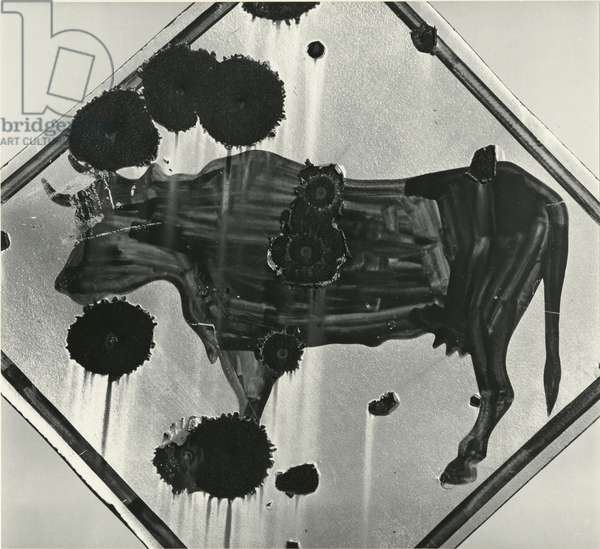 Sign, Mexico, 1976 (silver gelatin print)