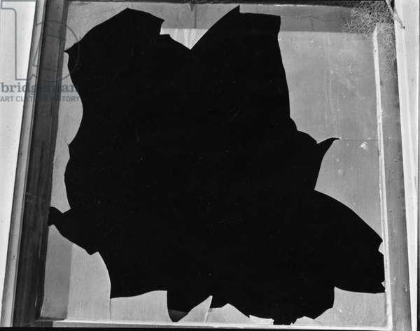 Broken Window, San Francisco, 1937 (silver gelatin print)