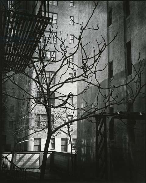 Manhattan Courtyard, New York, 1945 (silver gelatin print)