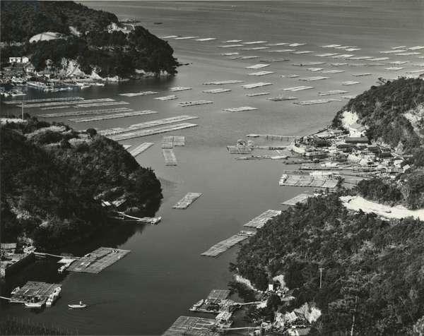 Bay, Japan, 1970 (silver gelatin print)