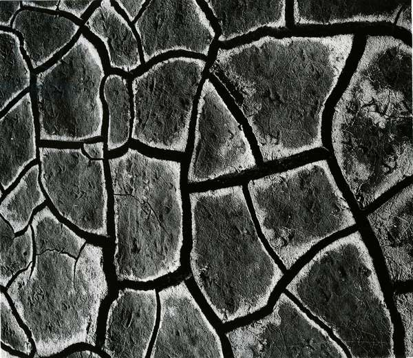 Mud Cracks, c. 1970 (silver gelatin print)