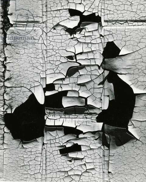 Cracked Paint, 1971 (silver gelatin print)