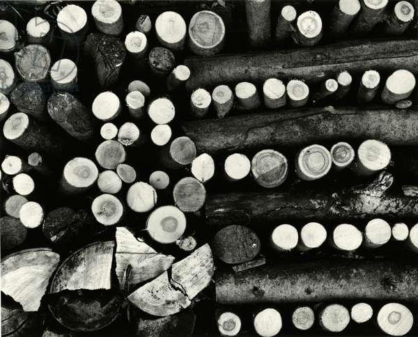 Stacked Wood, Europe, 1972 (silver gelatin print)