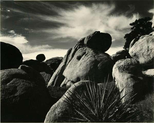 Yucca Valley, California, 1953 (silver gelatin print)