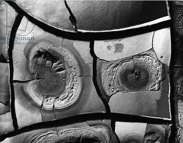 Mud Cracks, 1976 (silver gelatin print)