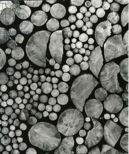 Stacked Wood, c.1970 (silver gelatin print)