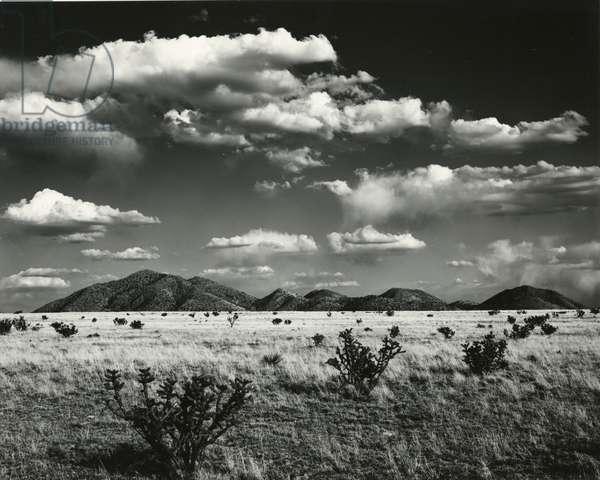 Desert Landscape, New Mexico, 1971 (silver gelatin print)