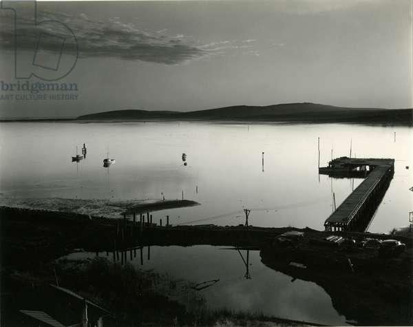 Bodega Bay, California, 1956 (silver gelatin print)
