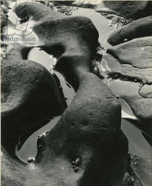 Rock and Water, Point Lobos, California, 1934 (silver gelatin print)