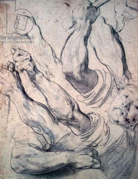 Studies of arms by Peter Paul Rubens