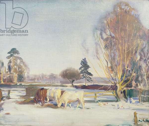 Cattle in Snow, c.1935