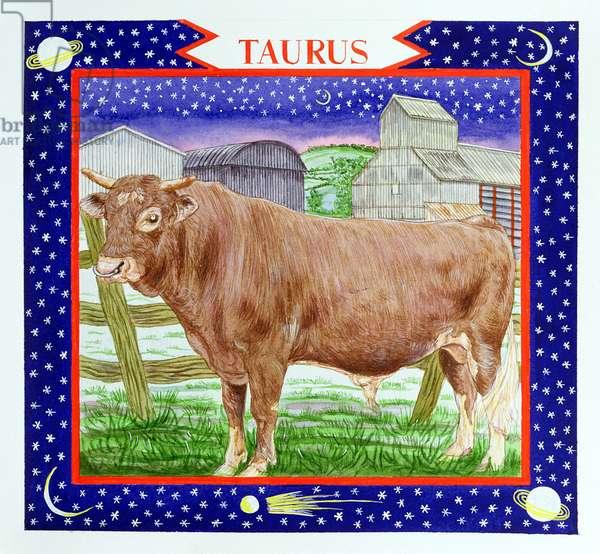 Taurus (w/c on paper)