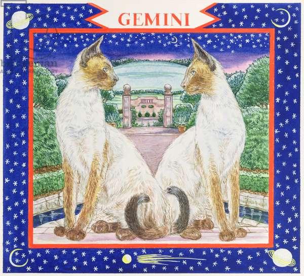 Gemini (w/c on paper)