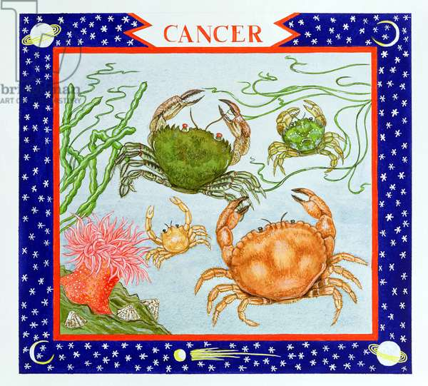 Cancer (w/c on paper)