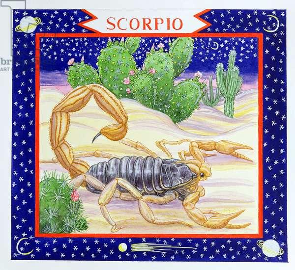 Scorpio (w/c on paper)