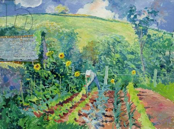 The Vegetable Garden, Coombe, 1988