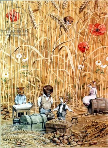 Cornfield, illustration from 'The Wind in the Willows' by Kenneth Grahame (w/c, gouache on paper)