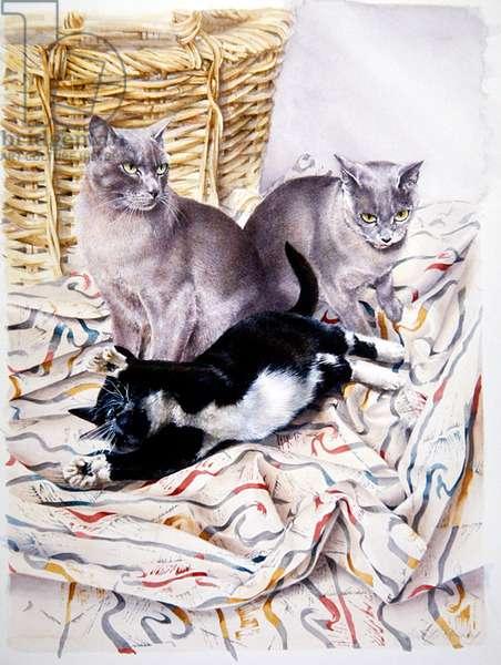 Muffin, Perdi and Solomon (w/c on paper)