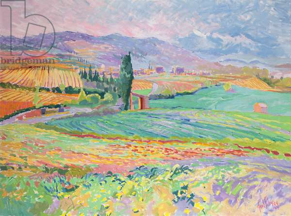 Fields Near Pomas, 1989 (oil on canvas)