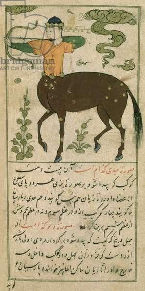 Constellations of the Zodiac: Sagittarius, the Archer, from Ta'lim dar ma'rifat i taqvuim, 1498 (903 Hijra) (vellum)
