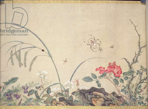 Flowers and insects (painting, hanging scroll)