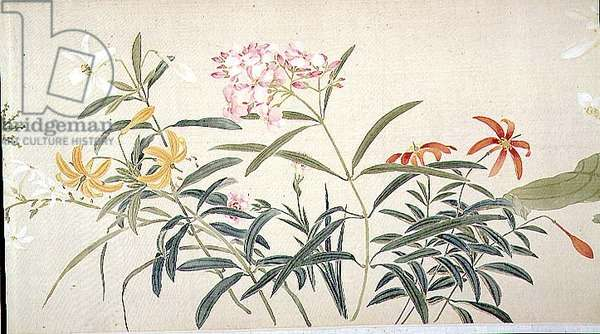 Flowers, (painting, hanging scroll)