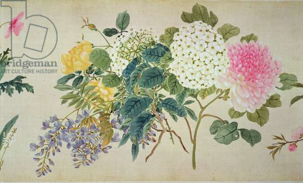 A botanical study of phlox and other flowers (w/c on silk)
