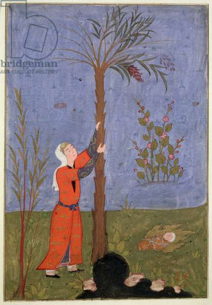 53(d) Mary Gripping the Date Palm, Persian miniature, Qazvin (vellum)