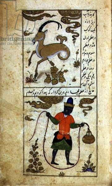 Constellations of the Zodiac: Top - Capricorn, the kid, Bottom - Aquarius, the water-pourer, from Ta'lim dar ma'rifat i taqvuim, 1498 (903 Hijra) (vellum)