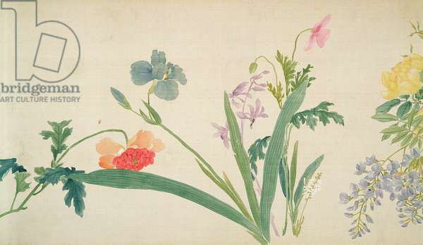 Flower, (painting, hanging scroll)