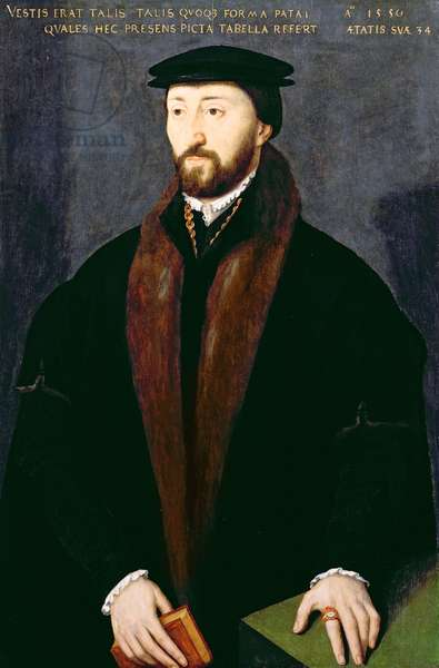 Portrait of Richard Pate (1516-88) benefactor of Corpus Christi College, Oxford 1550 (oil on panel)