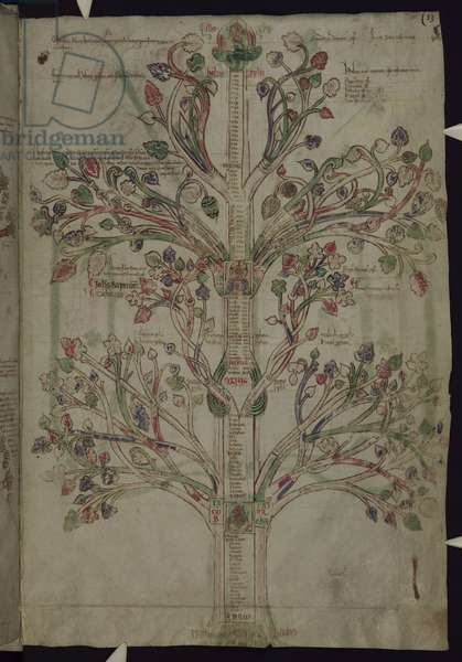MS 255A fol.10r The Tree of Life, from the Liber Figuarum (vellum)