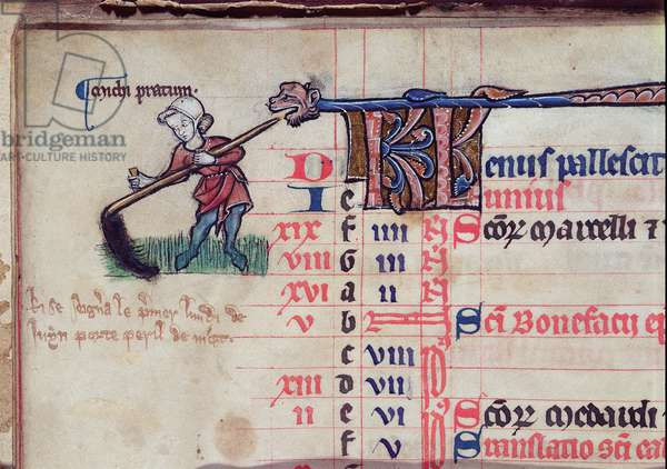 MS CCC 285 f.5v A figure cutting meadow grass, illustration for June, from a calendar of a psalter, English, c.1250-75 (parchment)