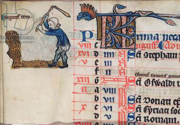 MS CCC 285 f.6v A figure threshing corn, illustration for August, from the calendar of a psalter, English, c.1250-75 (parchment)
