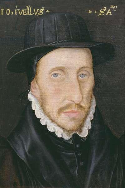 Portrait of John Jewell (1522-71) Fellow of Corpus Christi College, Oxford and Bishop of Salisbury (oil on panel)