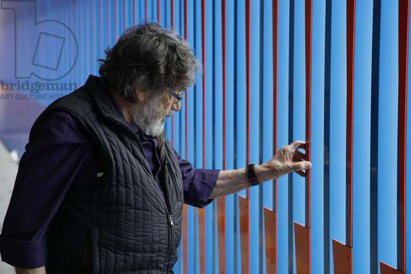Carlos Cruz-Diez looking at the Cromoestructura, 2015 (lacquered paint on an aluminum structure    )