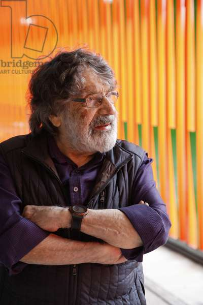 Carlos Cruz-Diez in front of a Cromoestructura, 2015 (lacquered paint on an aluminum structure    )