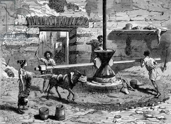 Preparation of bread under ancient Rome