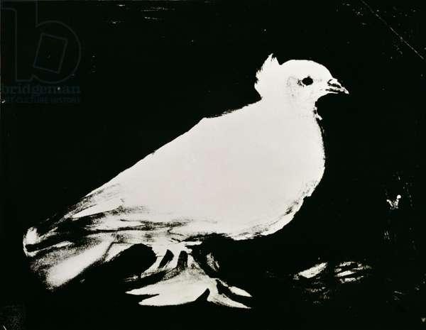 The Dove, 1949 (gouache on paper)